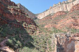 Sti nede i Grand Canyon mod colorado river
