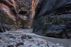 Flod i Zion National Park