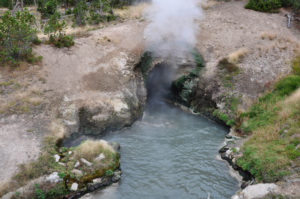 geiser Yellowstone nationalpark